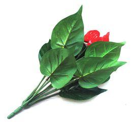 Canada Anthurium, vert anthurium en pot fleurs plantes vertes intérieures balcon bureau bureau fleurs artificielles bonsaï Offre