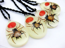 Wholesale Spider Lucite - FREE SHIPPING 12PCS fashion insect angle spider redegg glow in dark pendants
