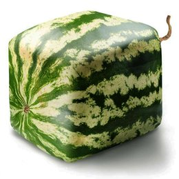 Wholesale Giant Fruit Seeds - 30 bag giant quadrate Watermelon Seeds ,Sweet Taste Vegetables and fruit seeds very giant delicious Easy to grow