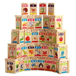 Wholesale Pines Toys - Dominoes 100pcs domino | color International Standards Pine production Fruit Animal cognition wooden toys Science and education Tool kid toy