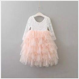 e03b5d7c9e70 2017 Baby Girls Lace tutu Dresses Kids Girls Princess tulle Dress Girl  Korean Luxury Party Dress Babies Autumn Clothing