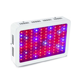 Wholesale led lighting for plant growth - LED Grow Light 1000W Morsen Full Spectrum Growing Lamp Double-Chips 10W LED Indoor Plant Lamp For Greenhouse Hydroponic Vegetables Growth