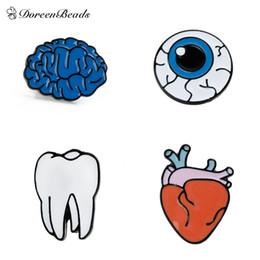 Wholesale Teeth Brooches - Wholesale- DoreenBeads Design Personality Brooch Tooth  Human Anatomical Heart  Cerebrum Brain   Eyeball Enamel, 1 Piece