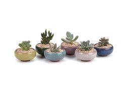 Wholesale Mini Ceramic Vases - Wholesale Colorful Mini Ceramic Plant Pots Flower Vase Succulent Plants For Indoor Home Garden Decoration Free Shipping