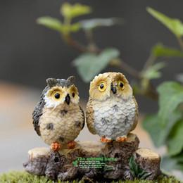 4 stile micro mini fata giardino miniature figurine Gufo uccelli animali Action Figure giocattoli ornamento terrario accessori puntelli di film da