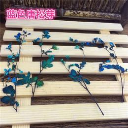 Wholesale Wholesale Diy Phone Case Decoration - Blue Color Twig Pressed Plant Dried Flower For DIY Decoration Home Ornament And Expoxy Phone Case 100Pcs