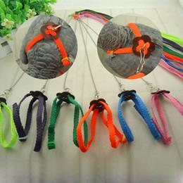 Wholesale Birds Harness - Practical Random Multicolor Light Soft Leash Bird Parrot Adjustable Harness & Leash Anti-bite 120cm