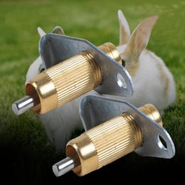 Wholesale Water Nipples For Poultry - 5set Copper Automatic Nipple Water Feeder Drinker Waterer For Rabbit Nipple Drinker Waterer Poultry Feeder Bunny Rodent Mouse