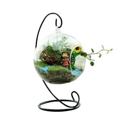 Wholesale Modern Round Vase - Clear Glass Round with 1 Hole Flower Plant Stand Hanging Vase Hydroponic Container Without Rack Home Office Decor
