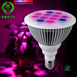 Wholesale LED Grow Lights Indoor Hydroponic Garden Plants W w E27 Growing Lamp Organic Soil Mini Greenhouse Led Bulbs