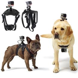 Wholesale Shoulder Strap Accessories - Wholesale- Action Camera Accessories Dog Fetch Harness Chest Strap Shoulder Belt Mount for SJ4000 WIFI Sport Camera