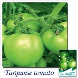 Wholesale Green Tomatoes Seed - Buy 2 Get 1!(Can accumulate ) 1 Pack 30 Seed Green Tomato Lycopersicon esculentum B043