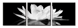 Wholesale Oil Painting Wall Deco Canvas - Framed 3PCS Beautiful White Lotus In Black,Pure Handpainted Huge Modern fashion home Wall Deco Art Oil Painting On canvas ali