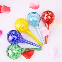 Piante di vetro irrigazione bulbi online-5mz Piante in vaso di vetro verde Piantare le lampadine per innaffiare le sfere automatiche del dispositivo dei globi di acqua della palla