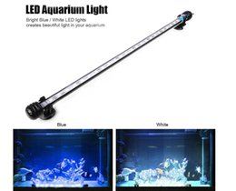 Wholesale Underwater Strip - 48CM LED Aquarium Light 24leds Blue   White Marine Pool Pond Underwater Lighting IP68 With EU UK US Switch Plug