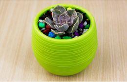 Canada 2017 NOUVEAU Pots De Jardinière Pots En Plastique Recyclé Parfait Pour Les Succulentes Forte, Réutilisable Végétale Fleur Herb Bed Pot Offre