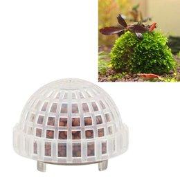 Wholesale Red Aquatic Plants - Fish Tank Decoration Natural Mineral Aquatic Moss Ball for Aquarium Crystal Red Shrimp Fish Tank -Y102