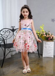 Wholesale Boat Lighting - 2017 new summer Girls dress Princess Dress Embroidered Cotton skirt