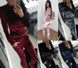 Wholesale Velvet Sportswear - Autumn and winter leisure fashion velvet suit sportswear Women's Tracksuits 0226