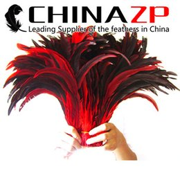 Wholesale Bulk Black Feathers - Excellent Quality CHINAZP 35~40cm(14~16inch)100Pcs lot Special Part Dyed Red Rooster Tail Feather for Bulk Feather