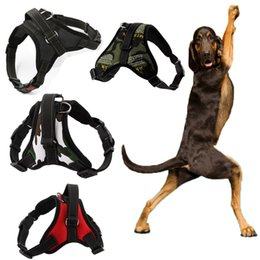 Wholesale Harness Wholesale Prices - Factory price Pet dog harness nylon mesh dog collars leashes lead 16 colors in stock DHL free