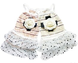 Wholesale Ladies Dress Suits Wholesale - Summer New clothes lady Small Dog lovely Youth Puppy Party cute Skirt Suit Clothes Free Shipping 4-1806