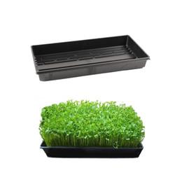 Wholesale Nursery Trays Wholesale - Nursery Pots Seed Starter TRAY Seedling Tray Plant Vegetable Pots Planting Plate Wheat Grass Sprout Malt Nursery Seedling Plate