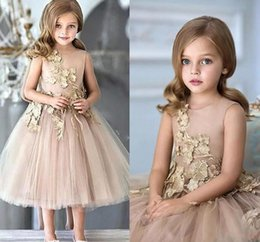 Wholesale Cute Picture For Wedding - Deep Champagne Jewel Neck Cute Baby Girls Dresses 2017 New Tea Length Lace Appliqued First Communion Flower Girl Dresses For Weddings Cheap