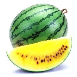 Wholesale Fruit Skins - Green Skin Yellow Watermelon 5 Seeds Easy to Germinate DIY Home Garden Heirloom Summer Fruit Tasty Sweet