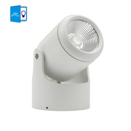 Wholesale Led Downlights 7w - Wholesale- 7W 10W 15W 20W COB Led downlights Surface Mounted Ceiling Spot light 180 degree Rotation Ceiling Downlight Dimmable +led driver