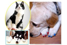 Wholesale Paw Care - Wholesale 20pcs lot Soft Pet Dog Cats Kitten Paw Claws Control Nail Caps Cover wraps catlike sets cat armor nail cap with glue