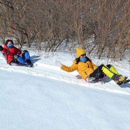 Wholesale Snow Ski Board - Wholesale- Sports Winter Thicken Plastic Grass Skiing Pad Sled Board Snow Sledge Snowboard