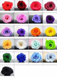 Wholesale birthday head - 24pcs 2-3cm Preserved Flower Rose Bud Head For Wedding Party Holiday Birthday Velentine's Day Gift Favor