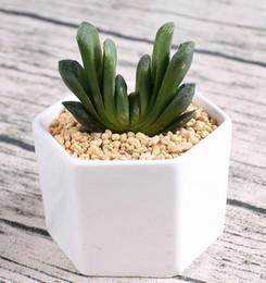 Wholesale bonsai succulent plant - 144pcs MOQ ceramic bonsai pots wholesale mini white porcelain flowerpots suppliers for seeding succulent indoor home Nursery planters