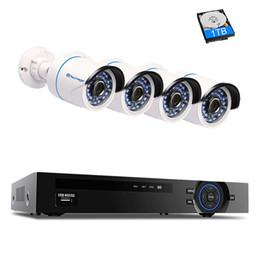 Argentina 4CH 1080P POE NVR Sistema de CCTV para cámaras de seguridad P2P IR Visión nocturna 4PCS 2.0MP Cámara IP para exteriores Kit de vigilancia de la vista Ver Suministro