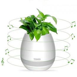 2019 sapatas da figura da forma TOKQI Bluetooth Inteligente Música Flowerpot MINI inteligente planta real toque tocar flowerpot longo tempo jogar baixo falante luz Da Noite