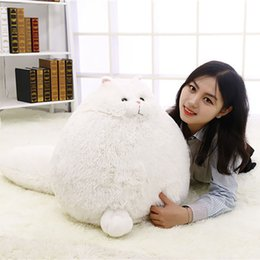 Wholesale Christmas Pet Toys - Fat Pet Cats Persian Cat Toys Pembroke Pillow Plush Toys Soft Stuffed Animal Peluches Dolls Baby Kids Gifts Brinquedos