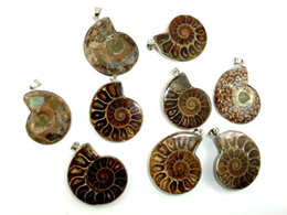 Wholesale Natural Fossil - Wholesale 10 Pcs Natural Ammonite Pendant Fossil Charm with Silver Plated Bail, Fossil Pendants Charms Fashion Jewelry Popular Simple Style
