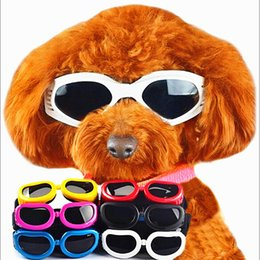Wholesale yard glasses - S M L three yards optional pet dog dog small glasses golden goggle funny cat Sunglasses sunscreen windproof anti UV Sunglasses