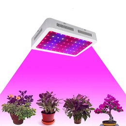 Wholesale Plant Grow Led Lamp - US Stock! Full spectrum LED Grow Light 600 1000 1200W Double Chips LED Grow Lights Indoor Plants lamp for flowering and growing
