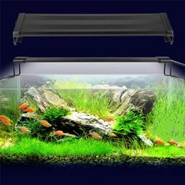 Wholesale light hood - 11W Aquarium LED Lights 100-240V SMD Blue And White 2 Mode Decorative Lamp For Fish Plant Lighting With EU UK US Plug epistar