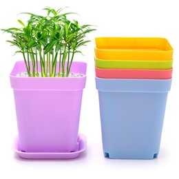 Wholesale Plastic Planting Trays Wholesale - Creative pot for desktop succulents personality flowerpot tray plastic mini small pot of flower color random slot