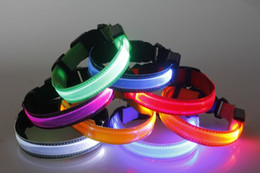 Wholesale Pvc Dog Collar - New pet product led pet collar led dog collar with clear luminous pvc support carving many colors for your choose