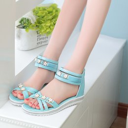 Wholesale Wedges Large Sizes - Pink Blue Apricot Open Toe Low Slope Heels Women's Sandals Shoes With Rhinestone 2017 Summer New Large Size 40 Ladies Footwear
