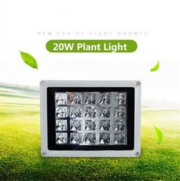 Wholesale Led Plant Glow Lights - 20W LED Grow Lights High Efficiency 85V-265V Outdoor Fruits and Vegetables Red Blue Waterproof led Plant Glow Lights No Plug