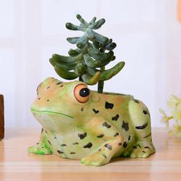 Wholesale Flower Frogs - new succulents pots Decorative fashion Creative Resin Artificial frog flower pots planters succulent pots put on desk home decorat wholesale