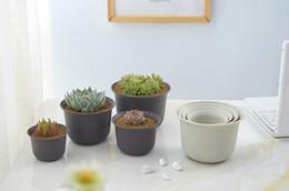 Commercio all'ingrosso 50 PZ MOQ Dull Polish Basin vivaio Vasi di fiori di plastica Casa per Piantare, Talee Piantine, Durevole Living Garden Fioriere da caso lucido fornitori