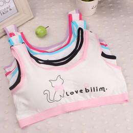 Wholesale wholesale training bras - Baby Girls Training Bras for 10-14Y Top Clothes 2017 Lovely Girls Printing Underwear Bra Vest Children Underclothes Sport Undies