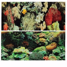 Wholesale Fish Poster - Double PVC Sided Aquarium Landscape Fish Tank Poster Background Vivarium Decor Various Patterns