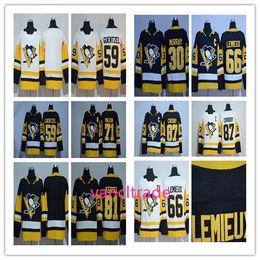 Wholesale Nylon 66 - 2017-2018 Season Pittsburgh Penguins 30 Murry 59 Jake Guentzel 66 Mario Lemieux 71 Evgeni Malkin 81 Phil Kessel 87 Sidney Crosby jerseys
